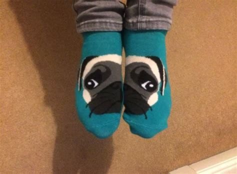 pug socks shoes socks pugs pug socks blue wheretoget