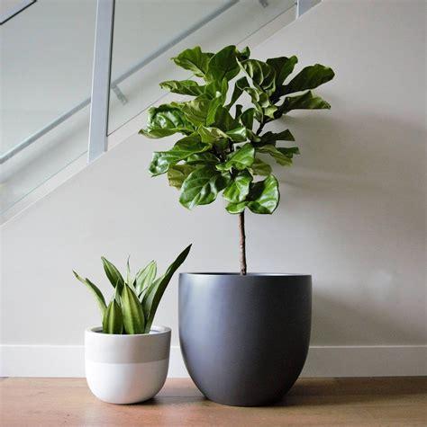 matte grey planter pot indoor outdoor modern