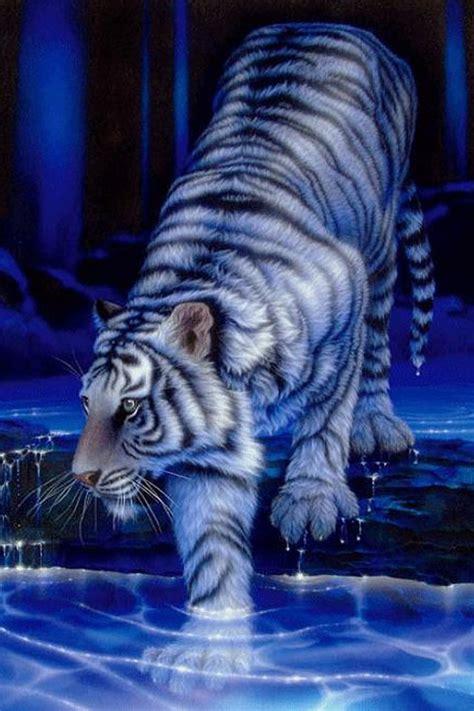 anime wallpaper tiger cool tiger wallpapers wallpapersafari