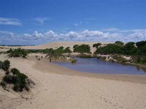 outer banks south carolina outer banks tourism best of outer banks nc tripadvisor