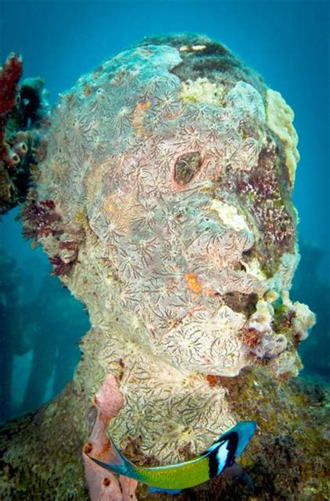 Artificial Coral 024 corals underwater sculpture by jason decaires