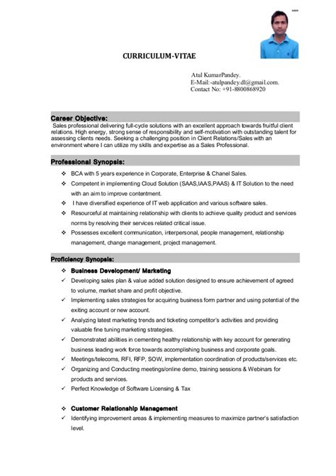 Software Professional Resume Sles by Resume Bdm Software Sales
