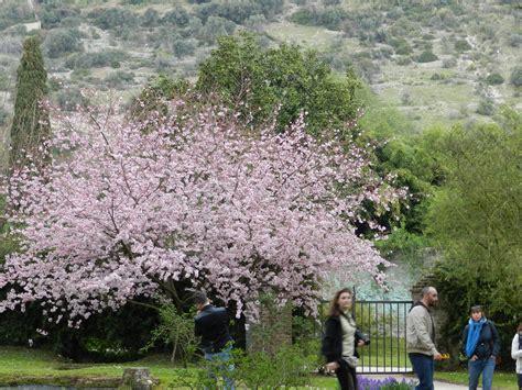 giardini di ninfa orari il giardino di ninfa apertura straordinaria cisterna di