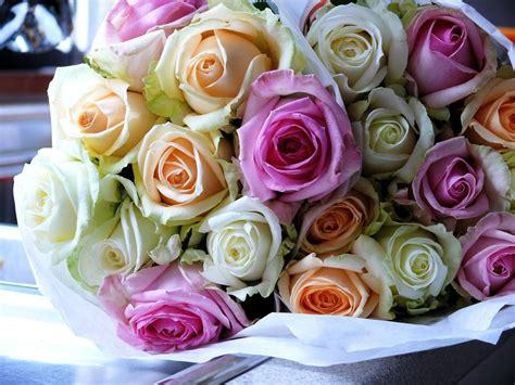 wallpaper bunga mawar warna warni 30 gambar desain karangan bunga nan indah