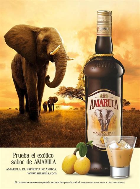 coffee liqueur wallpaper 1000 images about amarula recipes on pinterest tarts