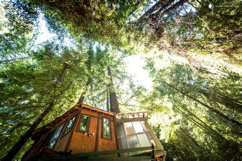 houses for rent in santa cruz gling tree house in santa cruz mountains near monterey bay ca