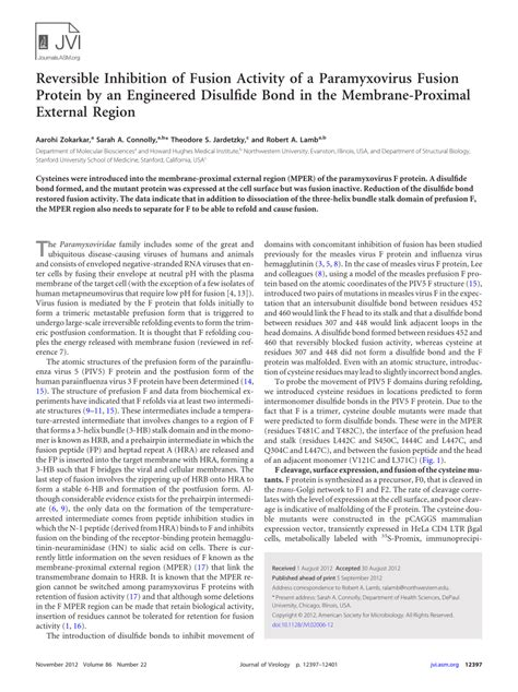 f protein paramyxovirus reversible inhibition of fusion activity of a