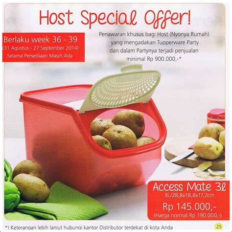 Access Mate 3l By Tupperware access mate tupperware promo september 2014