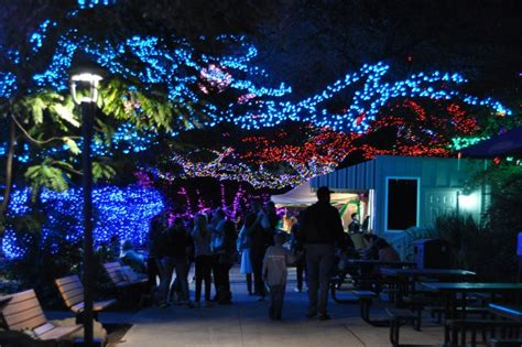 Things To Do In Houston Today And This Weekend With Kids Zoo Lights In Houston