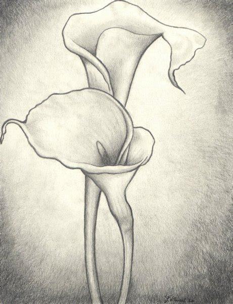 imagenes a lapiz flores como dibujar un ramo de flores a lapiz imagui