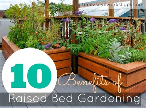 benefits of raised garden beds raised gardening 101 the benefits of a raised vegetable