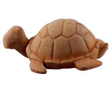 tartarughe da giardino giardino animali tartaruga bm168 animali bm168