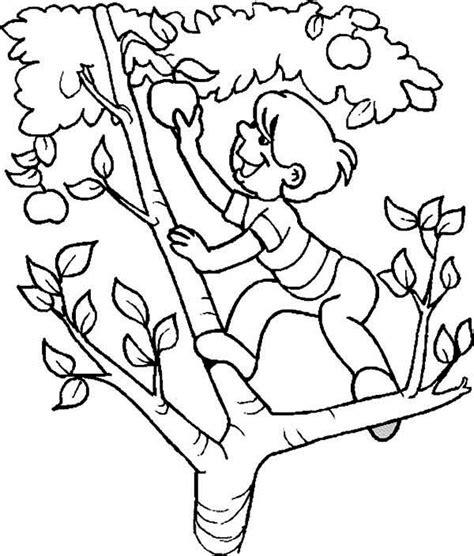 apple tree coloring page printable apple tree 59 nature printable coloring pages