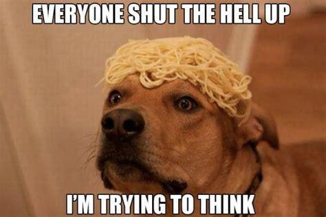Shut The Hell Up Meme - 25 funny dog memes dogtime