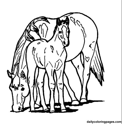 paint horse coloring pages 174 free printable coloring