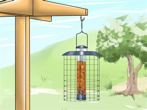 3 ways to deter squirrels from bird feeders wikihow
