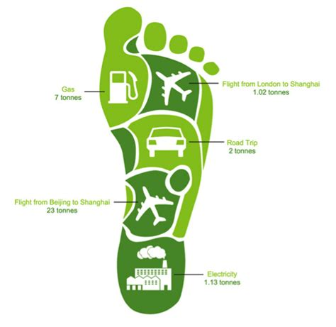 carbon footprint template top 7 tips to reduce your carbon footprint