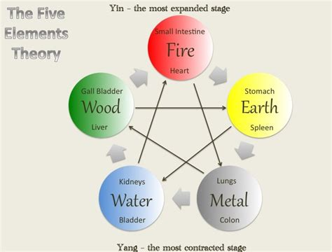 the 5 elements of 5 elements miracle soup