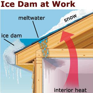 How To Prevent Dams From Stopping Dams Roofing House Exterior This House
