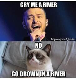 Justin Timberlake Meme - grumpy cat sings cry me a river by justin timberlake