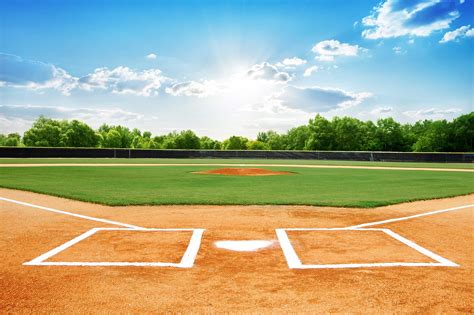 baseball field rugs best rug 2018