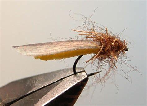 yellow mayfly pattern realistic stonefly wings frostyfly