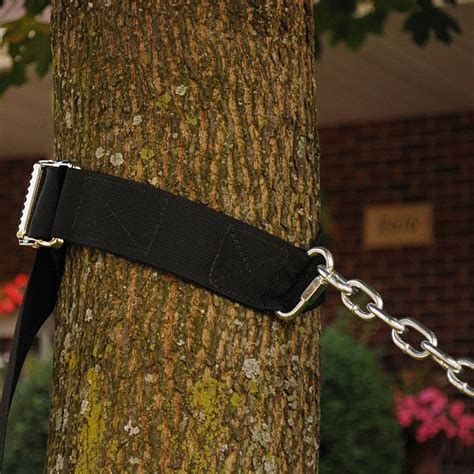 hanging a swing between two trees hammock tree hanging kit 7800