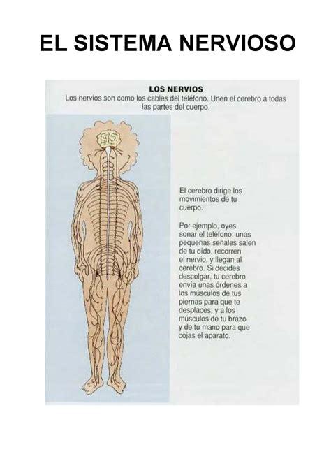 libro el cuerpo fichas para trabajar el cuerpo humano escuela en la nube