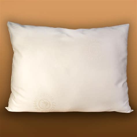 buckwheat pillows organic buckwheat and certified organic wool pillow lifekind