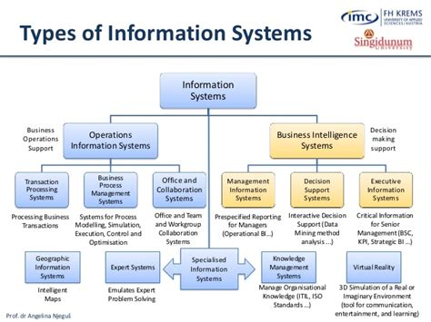 Mobile Web And Intelligent Information Systems lesson 1 foundations of information systems