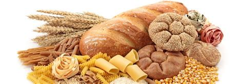 carbohydrates to stay away from how to burn back health ambition