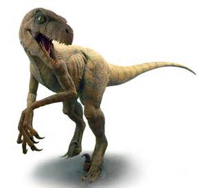 Dino Images Velociraptor Pictures Facts The Dinosaur Database