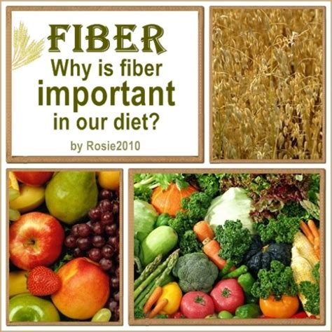 Importance Of High Fiber And Low Foods by What Is Fiber And Why Is Fiber Important In Our Diet