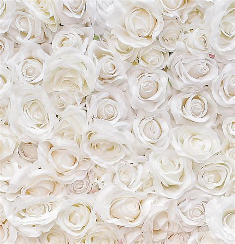 flower wall wedding cost the great wall of flowers curate d 233 cor design hawaii event design event rentals