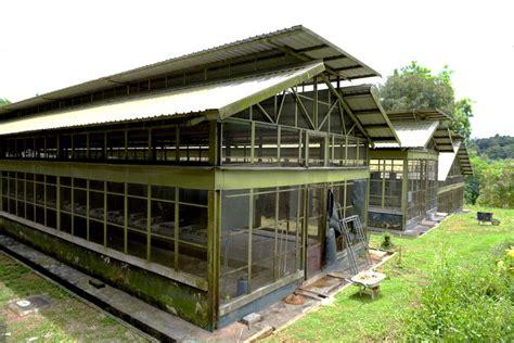 Pakan Walet Nusantara update 67 daftar peternak dan penangkar burung di