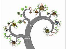 OneZoom Tree of Life Explorer Oak Leaf Pictures Clip Art