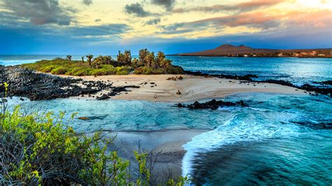 best islands galapagos islands attractive places for tourism gets ready