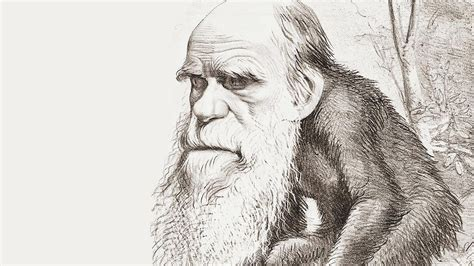 charles darwin victorian mythmaker review charles darwin victorian mythmaker by an wilson saturday review the times
