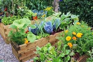 Home Gardening Ideas want to know how to make an urban vegetable garden this article will