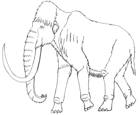 Real Woolly Mammoth Coloring Pages Coloring Pages Wooly Mammoth Coloring Page