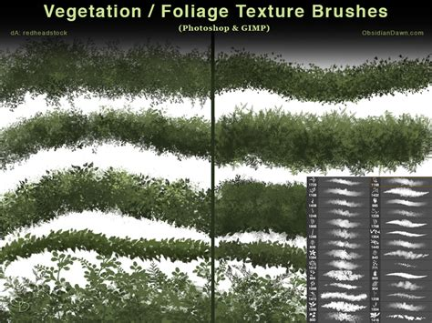 pattern photoshop vegetation vegetation foliage textures photoshop brushes by