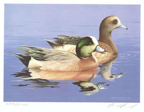 watercolor duck tutorial duck in water painting www pixshark com images