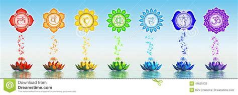 lotus flower chakra sacred chakra lotus stock illustration illustration of