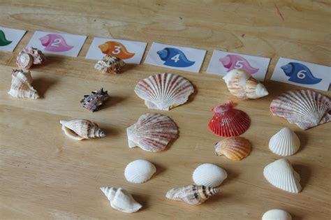 Where Can I Use Shell Gift Card - ocean commotion gt gt oyster pearls preschool craft