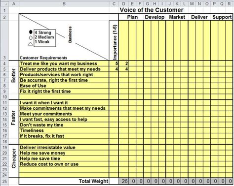 Voice Of The Customer Matrix In Excel Voc Voice Of The Customer Template