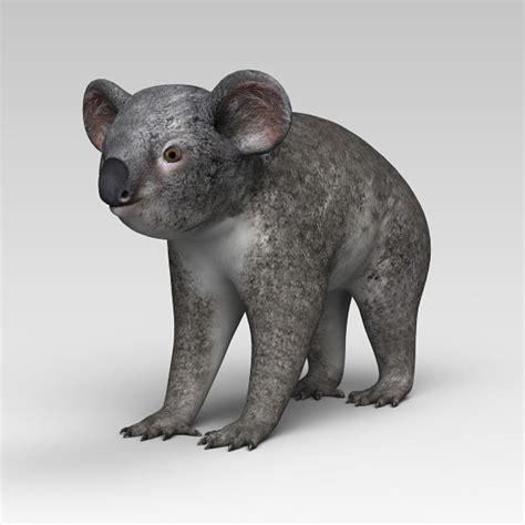 koala  ds