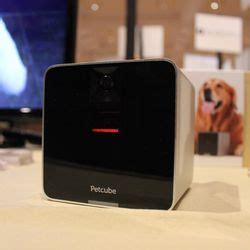 the petcube is like a tiny cat cafe at ces the verge