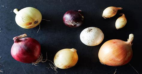 Lemari Es Warung jangan diulang hindari simpan tomat bawang roti dalam