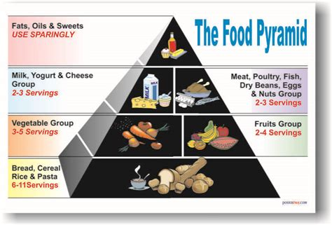 food pyramid healthy eating lunch meal diet  poster