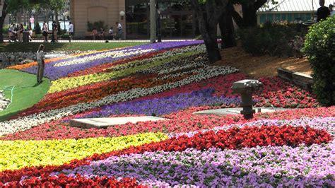 Flower And Garden Festival Epcot Epcot Flower And Garden Festival Wallpaper
